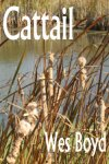 Cattail - small book cover