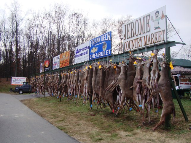 buck pole at a local butcher's on opening day of deer season