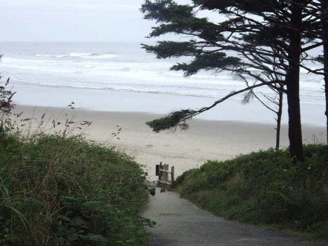 On a clear day, the Oregon coast is spectacular, but even on a cloudy day, it can still be pretty great scenery.