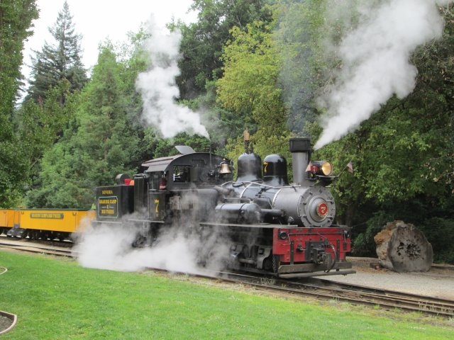 This classic Pacific Coast gear-driven Shay locomotive is located at the Roaring Camp and Big Trees Railroad, and it can sure fill the redwoods with smoke!